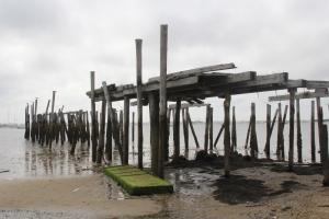 Low Tides Mareas Bajas
