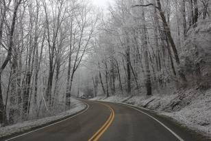 winter21014 2274