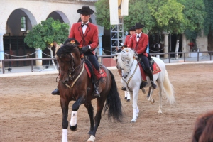 Espana y Portugal verano  2015 1507