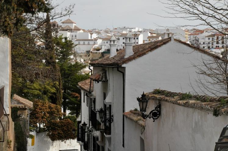 Spain (55)