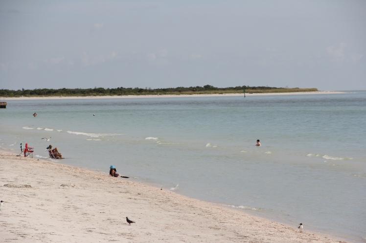 Florida West Coast Beaches: Venice, St. Petersburg, Fort Meyers, Sarasota, Crystal River, Marco Island, Captiva Island