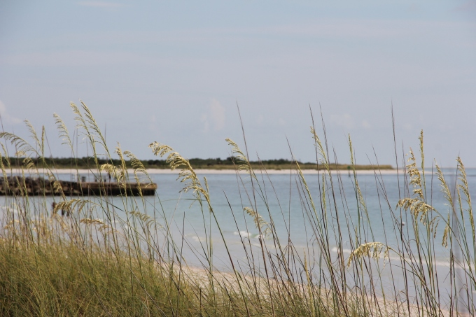 FORT MYERS 2014 008