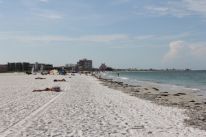FORT MYERS 2014 066