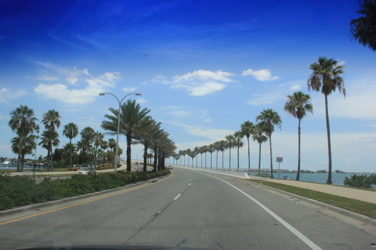 FORT MYERS 2014 112