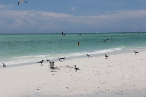 FORT MYERS 2014 179